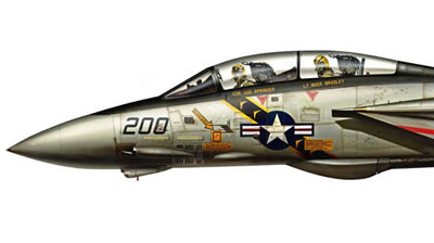New F-14 Tomcat Profiles Part 2