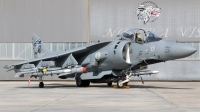 Photo ID 207459 by Andreas Zeitler - Flying-Wings. Italy Navy McDonnell Douglas AV 8B Harrier ll, MM7219