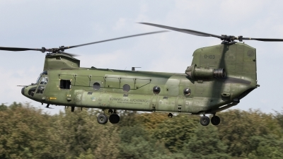 Photo ID 81121 by Niels Roman / VORTEX-images. Netherlands Air Force Boeing Vertol CH 47D Chinook, D 103