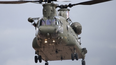Photo ID 84513 by Niels Roman / VORTEX-images. UK Air Force Boeing Vertol Chinook HC2A, ZH895
