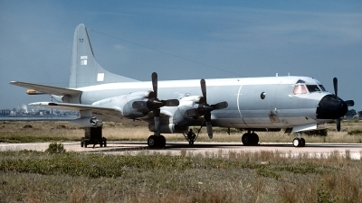 Photo ID 83607 by Carl Brent. Portugal Air Force Lockheed P 3P Orion, 14806