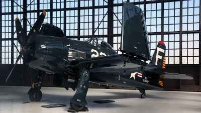 Photo ID 87062 by David F. Brown. Private Private Grumman F8F 2 Bearcat, NX8TF