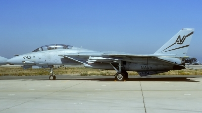 Photo ID 90255 by Rainer Mueller. USA Navy Grumman F 14A Tomcat, 160684