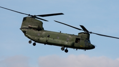 Photo ID 91712 by Jan Eenling. Netherlands Air Force Boeing Vertol CH 47D Chinook, D 103
