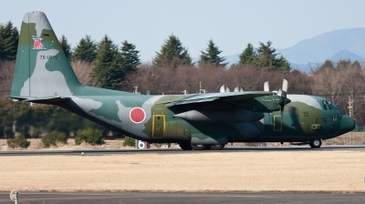 Photo ID 93874 by Andreas Zeitler - Flying-Wings. Japan Air Force Lockheed C 130H Hercules L 382, 75 1075