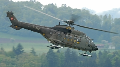 Photo ID 100096 by Sven Zimmermann. Switzerland Air Force Aerospatiale AS 332M1 Super Puma, T 313