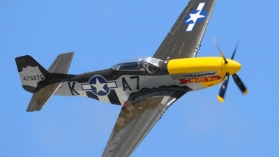 Photo ID 101473 by W.A.Kazior. Private Private North American F 51D MkII Mustang, N119H
