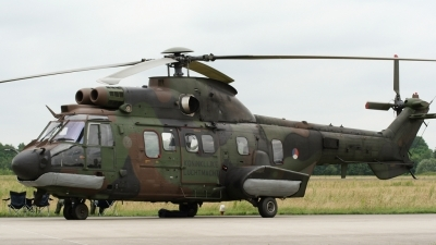 Photo ID 13796 by Jeffrey Mossing Holsteijn. Netherlands Air Force Eurocopter AS 532U2 Cougar MkII, S 442