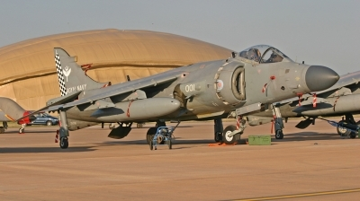 Photo ID 14046 by Maarten Peters. UK Navy British Aerospace Sea Harrier FA 2, ZH796