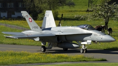 Photo ID 112997 by Thomas Ziegler - Aviation-Media. Switzerland Air Force McDonnell Douglas F A 18C Hornet, J 5010