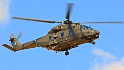 Photo ID 121053 by XRISTINA PATSI. Greece Army NHI NH 90TTH, ES843
