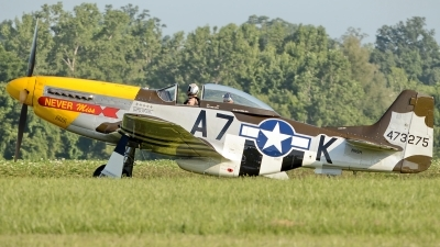 Photo ID 124180 by W.A.Kazior. Private Private North American F 51D MkII Mustang, N119H