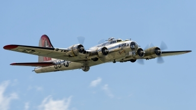 Photo ID 126619 by Dariusz Siusta. Private Yankee Air Force Boeing B 17G Flying Fortress 299P, N3193G