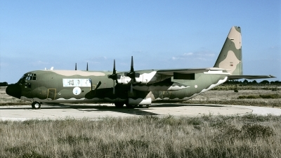 Photo ID 128801 by Marinus Dirk Tabak. Portugal Air Force Lockheed C 130H 30 Hercules L 382, 16806