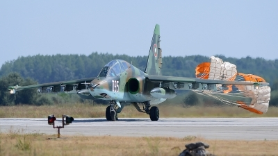 Photo ID 133314 by Stephan Franke - Fighter-Wings. Bulgaria Air Force Sukhoi Su 25UBK, 095