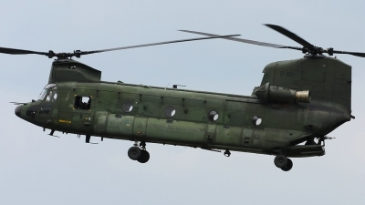 Photo ID 135046 by Maurice Kockro. Netherlands Air Force Boeing Vertol CH 47D Chinook, D 101