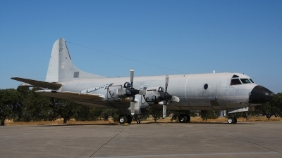 Photo ID 135312 by Paul Newbold. Portugal Air Force Lockheed P 3P Orion, 14805