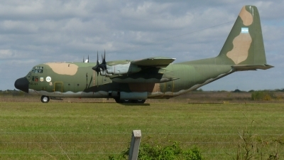 Photo ID 141345 by Fabian Pesikonis. Argentina Air Force Lockheed C 130H Hercules L 382, TC 61