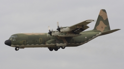 Photo ID 18237 by Koen Leuvering. Portugal Air Force Lockheed C 130H 30 Hercules, 16806