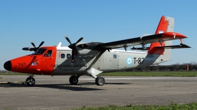 Photo ID 144837 by Martin Kubo. Argentina Air Force De Havilland Canada DHC 6 200 Twin Otter, T 87