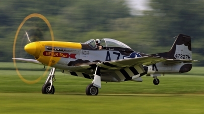 Photo ID 144978 by David F. Brown. Private Private North American F 51D MkII Mustang, N119H