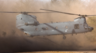 Photo ID 154875 by Devid Ryckewaert. Netherlands Air Force Boeing Vertol CH 47F Chinook, D 890
