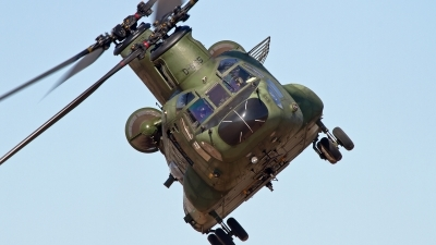 Photo ID 155445 by Niels Roman / VORTEX-images. Netherlands Air Force Boeing Vertol CH 47D Chinook, D 665