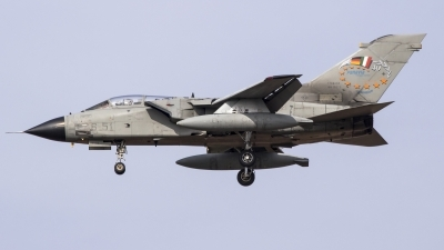 Photo ID 156490 by Luca Bani. Italy Air Force Panavia Tornado IDS T, MM55000