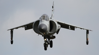 Photo ID 163374 by Johannes Berger. Private Nalls Aviation Inc British Aerospace Sea Harrier FA 2, N94422