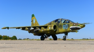 Photo ID 168062 by Stephan Franke - Fighter-Wings. Ukraine Air Force Sukhoi Su 25UB, 60 BLUE