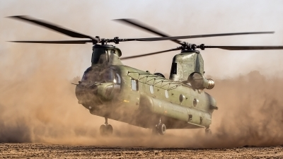 Photo ID 170956 by Ron Kellenaers. Netherlands Air Force Boeing Vertol CH 47D Chinook, D 665