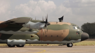 Photo ID 21112 by Christian Zambruno. Argentina Air Force Lockheed C 130H Hercules L 382, TC 61