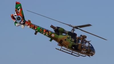 Photo ID 175957 by Filipe Barros. France Army Aerospatiale SA 342M Gazelle, 3664