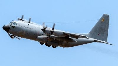 Photo ID 178259 by Marco Casaleiro. Portugal Air Force Lockheed C 130H Hercules L 382, 16804