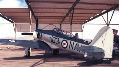 Photo ID 2335 by Ted Miley. Australia Navy Hawker Sea Fury T20, NX51SF