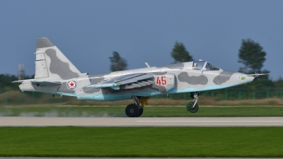 Photo ID 181921 by Peter Terlouw. North Korea Air Force Sukhoi Su 25,