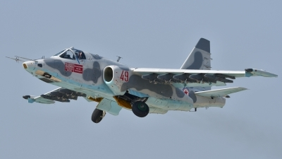 Photo ID 182408 by Peter Terlouw. North Korea Air Force Sukhoi Su 25,