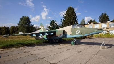 Photo ID 183443 by Lukas Kinneswenger. Ukraine Air Force Sukhoi Su 25, 41 WHITE