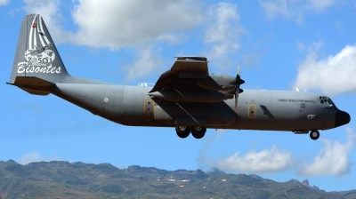 Photo ID 184641 by Alejandro Hernández León. Portugal Air Force Lockheed C 130H 30 Hercules L 382, 16806