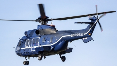 Photo ID 189869 by rob martaré. Germany Bundespolizei Aerospatiale AS 332L1 Super Puma, D HEGD