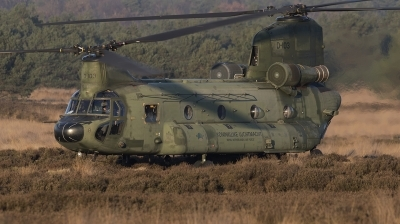 Photo ID 201919 by de Vries. Netherlands Air Force Boeing Vertol CH 47D Chinook, D 103