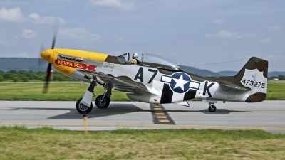 Photo ID 205388 by David F. Brown. Private Private North American F 51D MkII Mustang, N119H