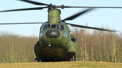 Photo ID 206011 by Robert Flinzner. Netherlands Air Force Boeing Vertol CH 47D Chinook, D 664