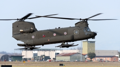 Photo ID 206106 by Varani Ennio. Italy Army Boeing Vertol ICH 47F Chinook, MM81789