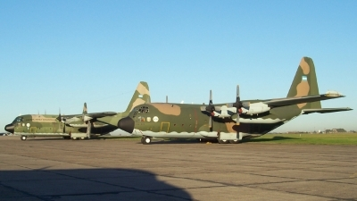 Photo ID 24428 by Martin Kubo. Argentina Air Force Lockheed C 130H Hercules L 382, TC 61