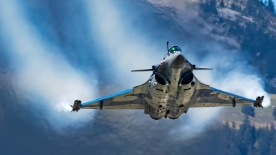 Photo ID 207436 by Thomas Ziegler - Aviation-Media. France Air Force Dassault Rafale C, 133