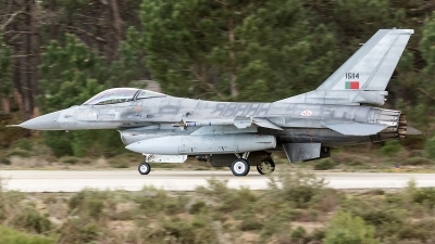 Photo ID 208648 by Thomas Ziegler - Aviation-Media. Portugal Air Force General Dynamics F 16AM Fighting Falcon, 15114