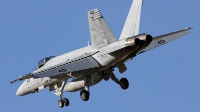 Photo ID 24563 by Simon Gregory - AirTeamImages. USA Navy Boeing F A 18E Super Hornet, 166438