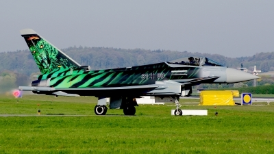 Photo ID 210014 by Günther Feniuk. Germany Air Force Eurofighter EF 2000 Typhoon S, 31 00