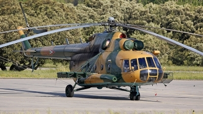 Photo ID 210527 by Fernando Sousa. Hungary Air Force Mil Mi 17, 704